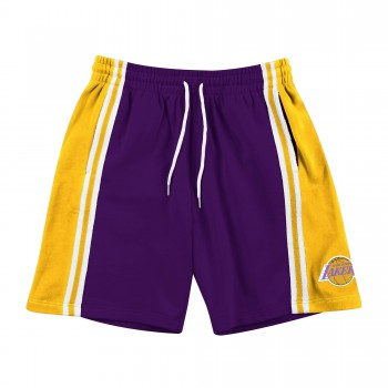 Short NBA Los Angeles Lakers French Terry Shoref18032-lalpurpkbr-s | Mitchell & Ness